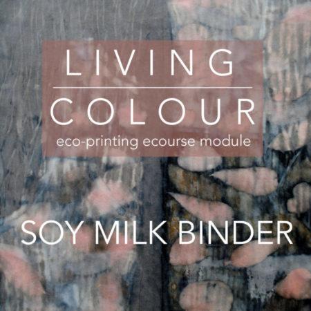 Soy Milk Binder