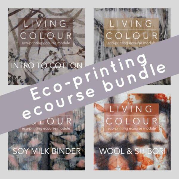 Living Colour ecourse bundle